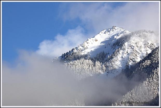 Neige au sommet