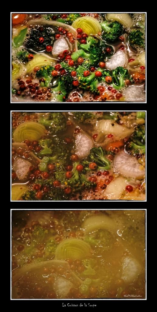 la-cuisson-de-la-soupe